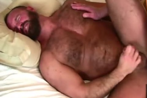 Daddy Bears bang In sofa