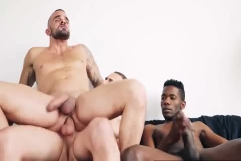 bare thick dicks Compilation